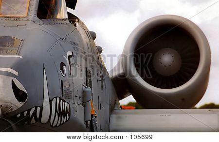 Warthog Airplane
