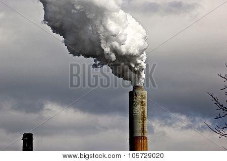 Scrubbed Smoke
