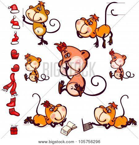Set monkey