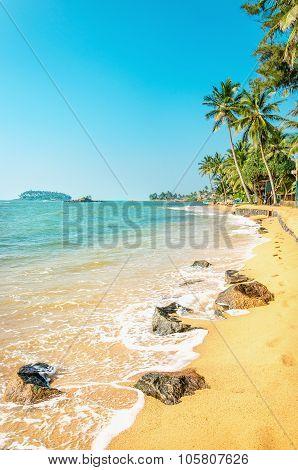 Caribbean beach full of palm trees against azure sea