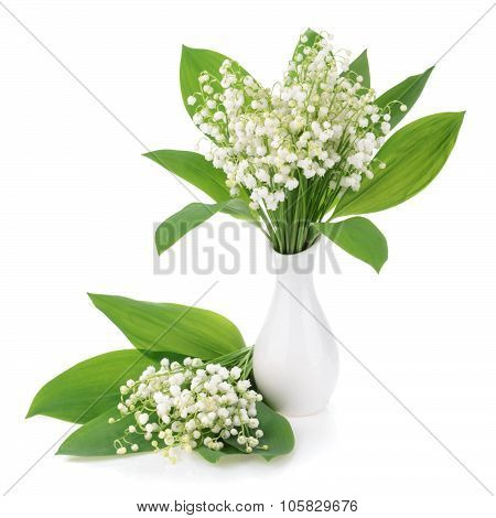 Lilies Of The Valley On White Background