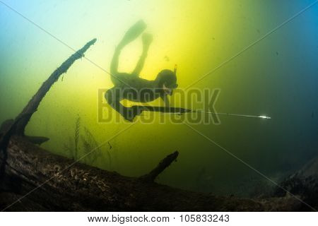 Man swimming underwater with spear gun over the bottom of the lake