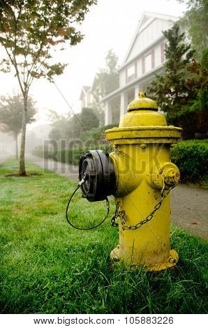Yellow Fire Hydrant On A Foggy Street