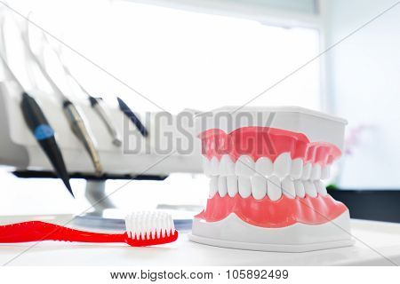 Clean teeth denture, dental jaw model and toothbrush in dentist's office. Dentistry poster