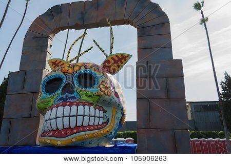 Skull Sculpture On Display