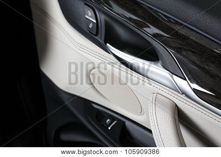 Car Interior. Doors