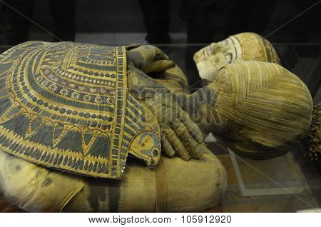 Details Of Egyptian Mummy