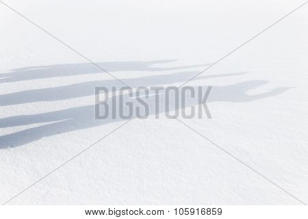 Three Human Shadows Waving On The Snow