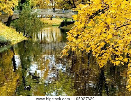 Autumn  In Riga (latvia)