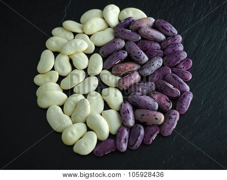 White and purple dried beans yin and yang