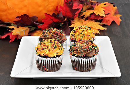 Autumn Decorated Chocolate Cupcakes In A Fall Setting.