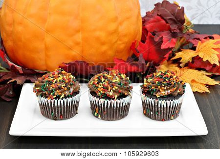 Three Chocolate Cupcakes In A Row In Front Of Autumn Decorations.