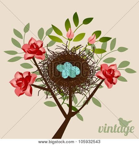 Vintage type nest and specked eggs in a rosebush - bird on word vintage (separate)