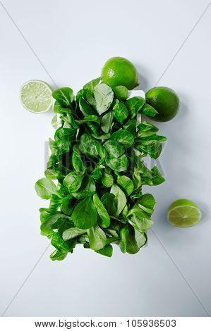 Watercress Salad In White Wooden Box With Limes Around Top View