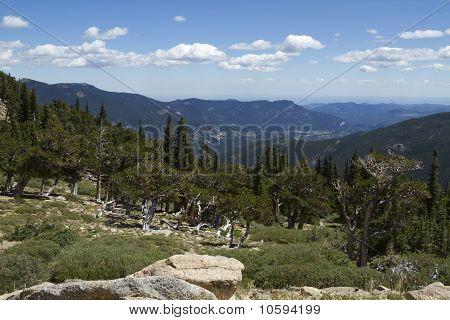 Mt. Evans Vista