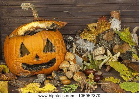 End of Halloween, moldy pumpkin. Remembering Halloween.