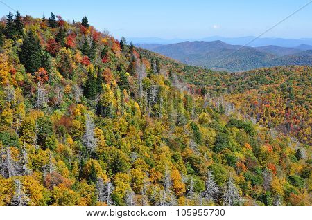 Autumn landscape in the Blue Ridge Mountains section of the Appalachian range