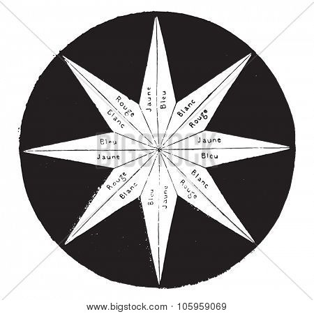 The halves of the star rays are successively, vintage engraved illustration. Magasin Pittoresque 1878.