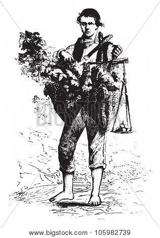 Merchant grapes, vintage engraved illustration. Magasin Pittoresque 1878.