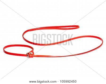 Lead-stranglehold For Dog
