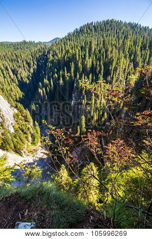 Steep Cliff In Romanian Mountains