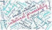 Intestinal Permeability word cloud on a white background. poster