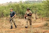 MAGALIESBERG SOUTH AFRICA - October 14: Dehorning of rhinos in Askari Game Lodge to protect them against poachers on October 14 2015 at Magaliesberg South Africa. Dehorning process under close armed protection of Anti Poaching Unit for protection against poster