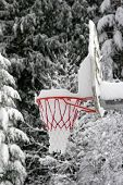 basketball hoop filled with snow after a storm poster