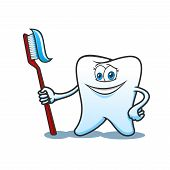 Smiling healthy white tooth cartoon character holds toothbrush with toothpaste in hand. For hygiene or dentistry themes design poster