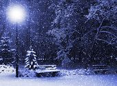 View of bench against christmas tree and shining lantern through snowing. Blue tone. Night shot. poster
