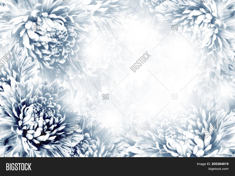 Floral Dark Blue White Image Photo Free Trial Bigstock