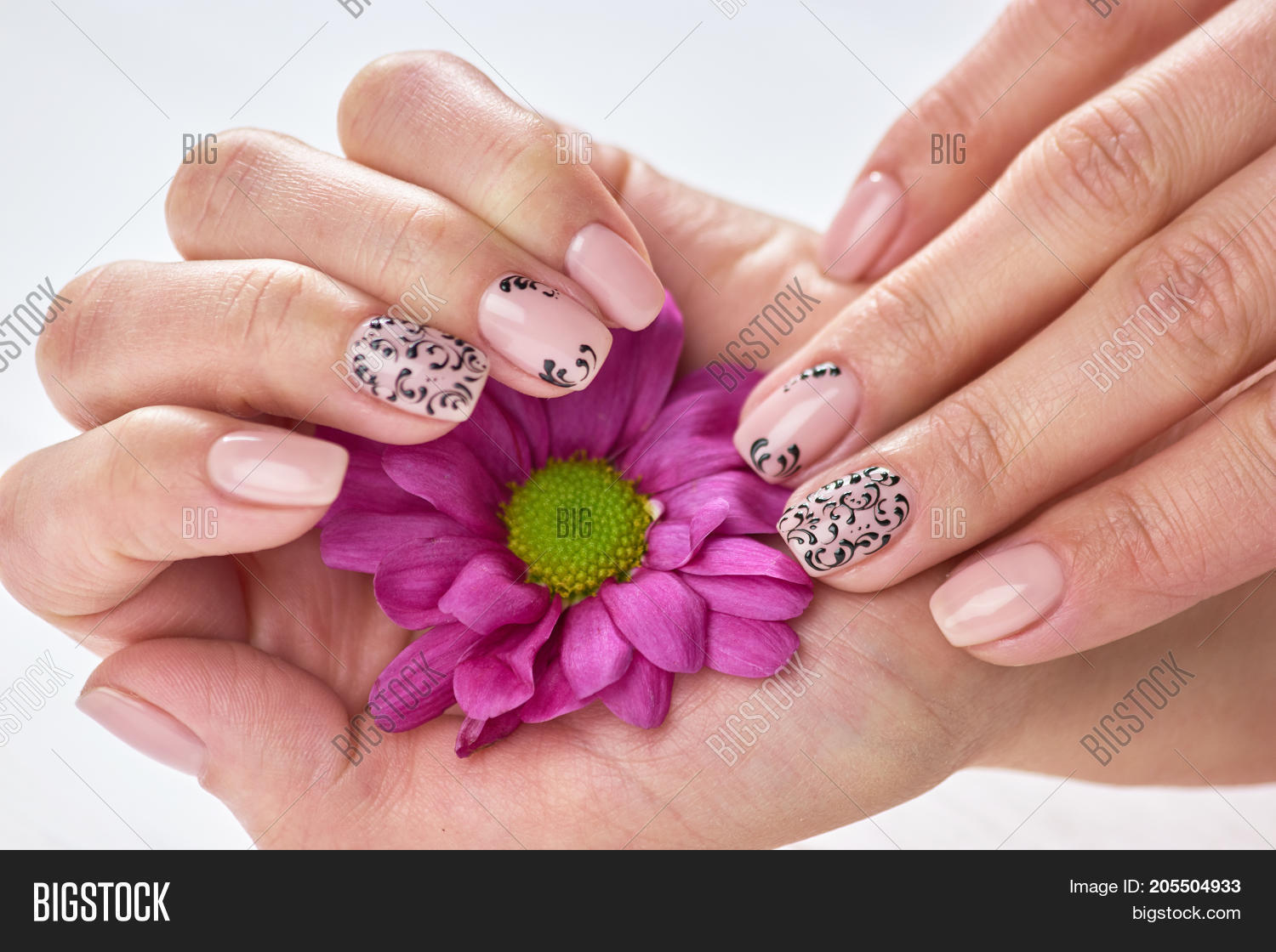 Female Manicured Hands Image Photo Free Trial Bigstock