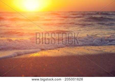 Soft wave of sea on sandy beach at warm gold sunset light. Selective focus.