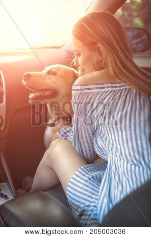 Woman with labrador retriever dog in car
