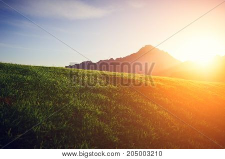 green lawn with a mountain on a background at sunset