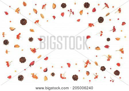 Autumn Frame. Viburnum Berries, Dried Branches, Pine Cone, Autumn Acorn, Flowers On White Background