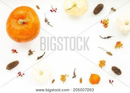 Autumn Frame Made Of Orange Pumpkin, Dried Autumn Leaves, Pine Cones, Viburnum Berries On White Back