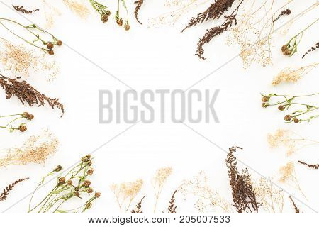 Autumn frame. Viburnum berries, dried branches, autumn acorn, pice cone, flowers on white background. Flat lay, top view