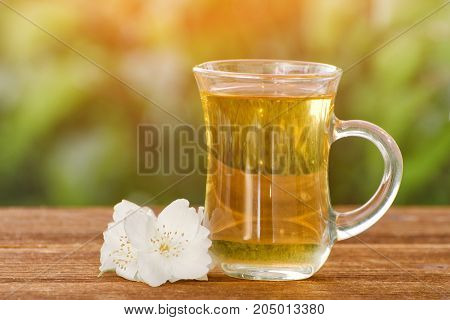 Transparent mug of tea with jasmine on a background of greenery sunlight. Close-up