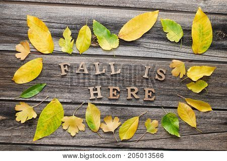 Phrase Fall Is Here In Wooden Letters. Frame Of Yellow Leaves, Wooden Background