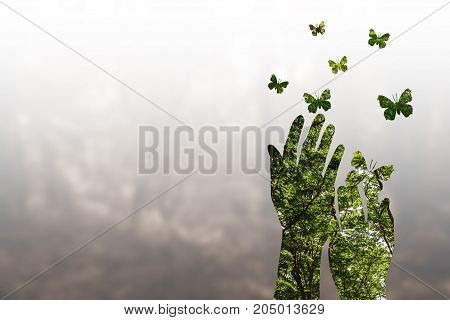 Double exposure effects on silhouette hand combined with photograph of green forest landscape - Conceptual Nature -environment.