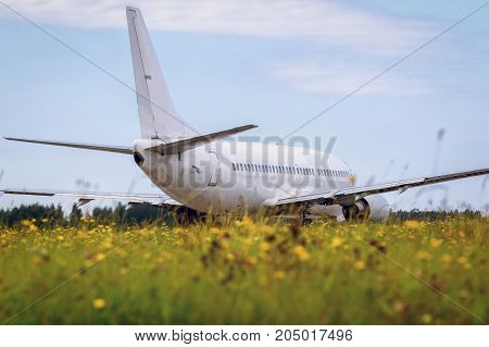 The airplane is moving on the runway against the background of the forest and blue cloud sky and in the foreground beautiful field of yellow bright flowers. Summer sunny weather
