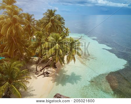 Beach of small island with palms aerial above view