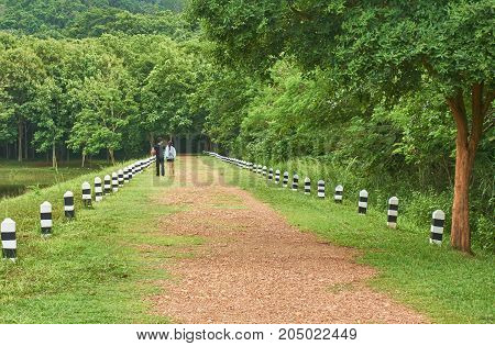 A couple is walking along the road in freshness morning. Romantic among green color of nature.