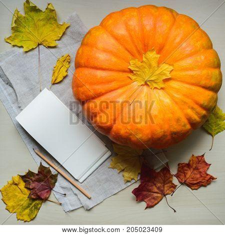 composition of fresh orange pumpkin harvest for thanksgiving day