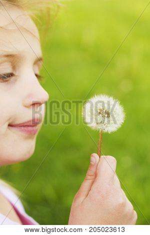 a girl with a plant dandelion in field.