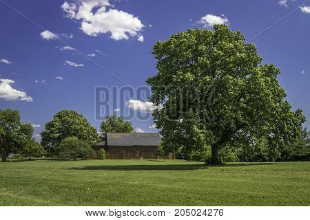 Big tree, barn house at Fort McHenry, Baltimore