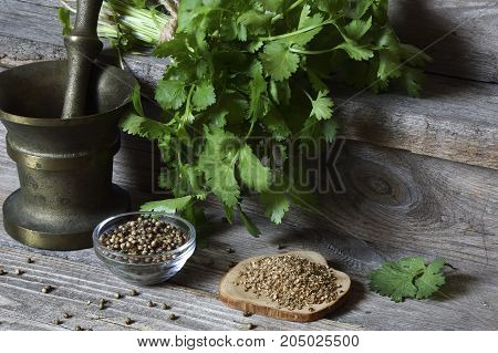 Coriander - ground, grains and green leaves on the kitchen table