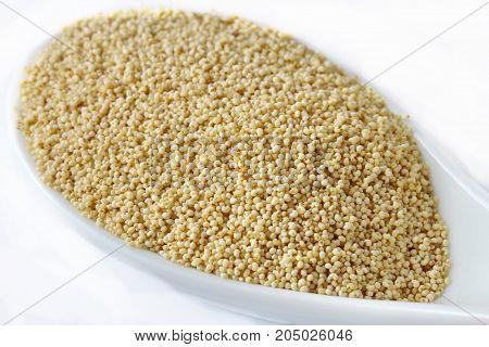 Poppy seeds or Poste ka Dana in a spoon