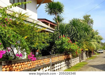 beautiful tropical flower-lined side street near Songkhla, Thailand
